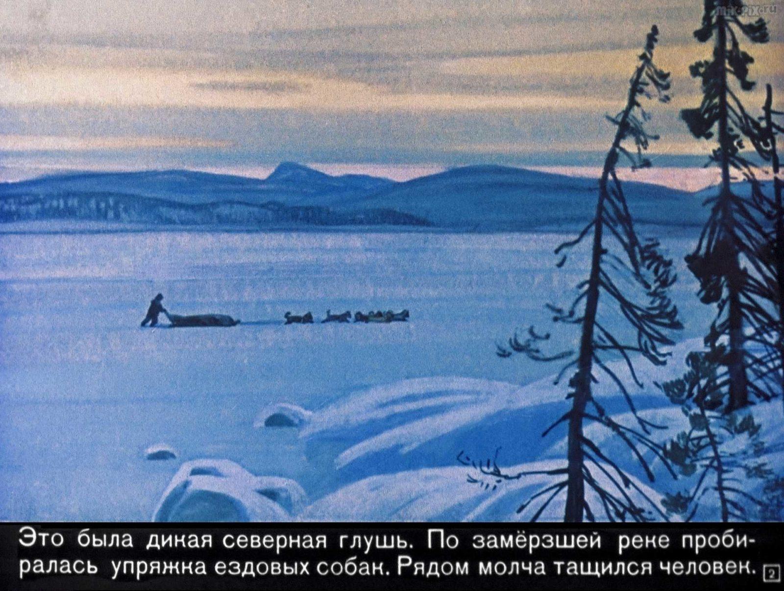 Белый клык (1969) 30