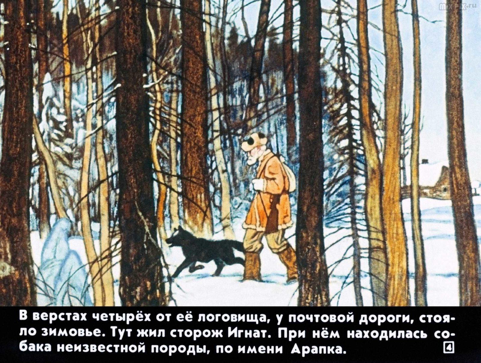 Белолобый (1988) 19