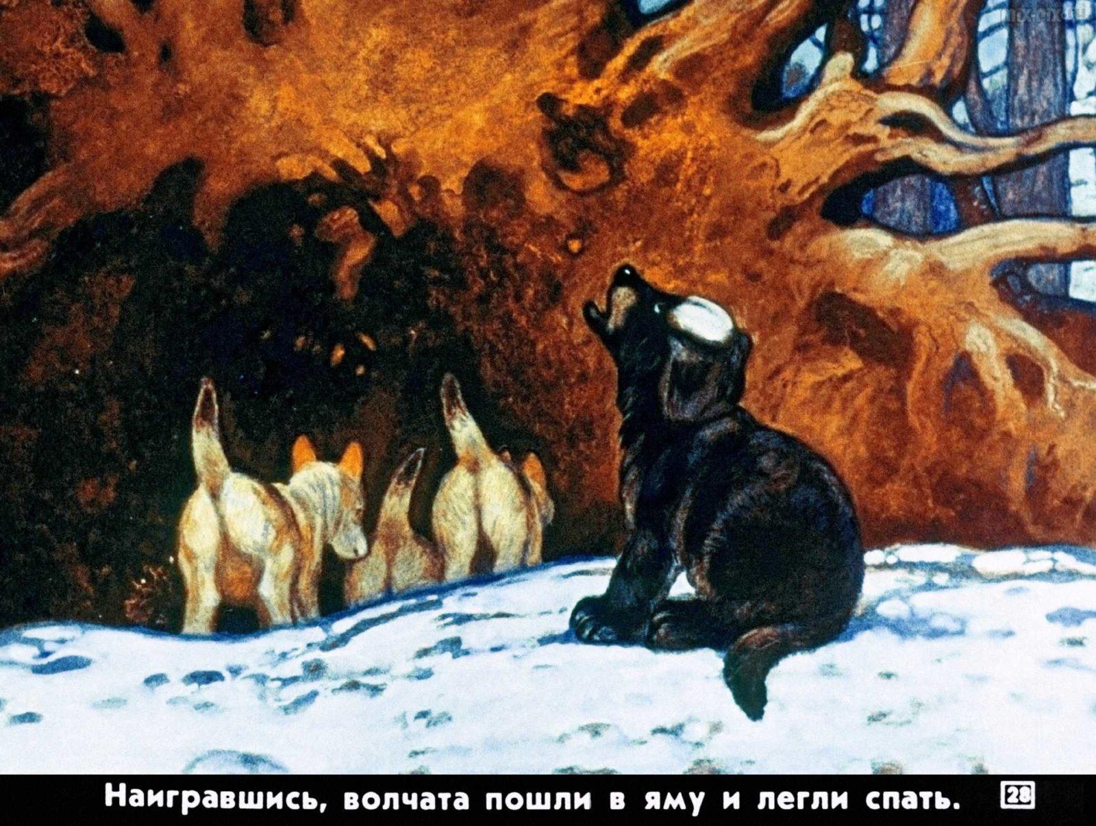 Белолобый (1988) 28