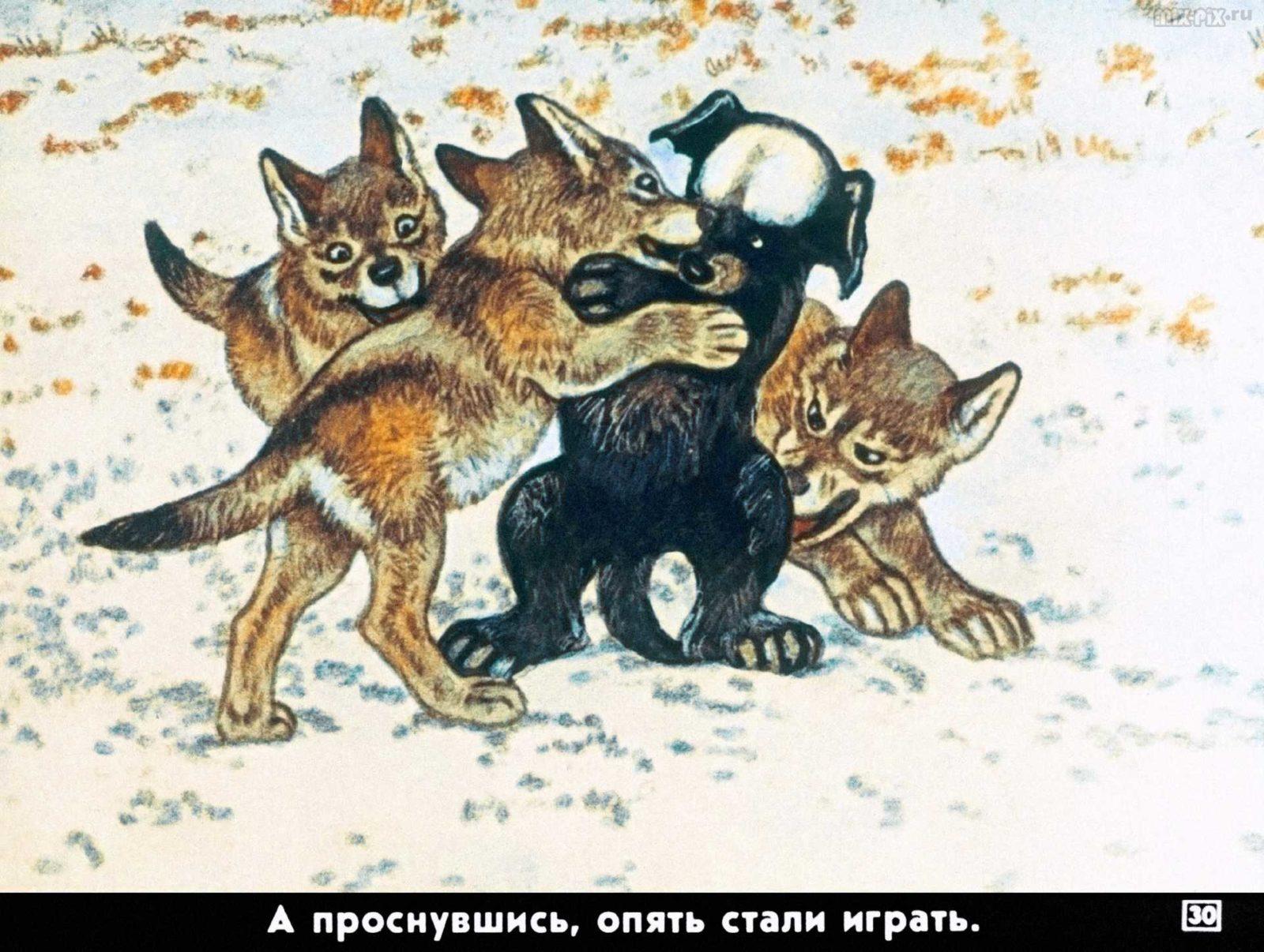 Белолобый (1988) 29