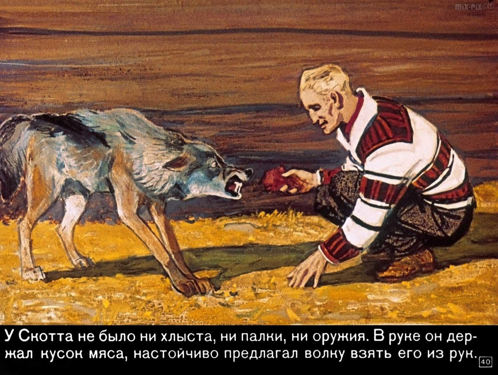 Диафильм - Белый клык (1969)