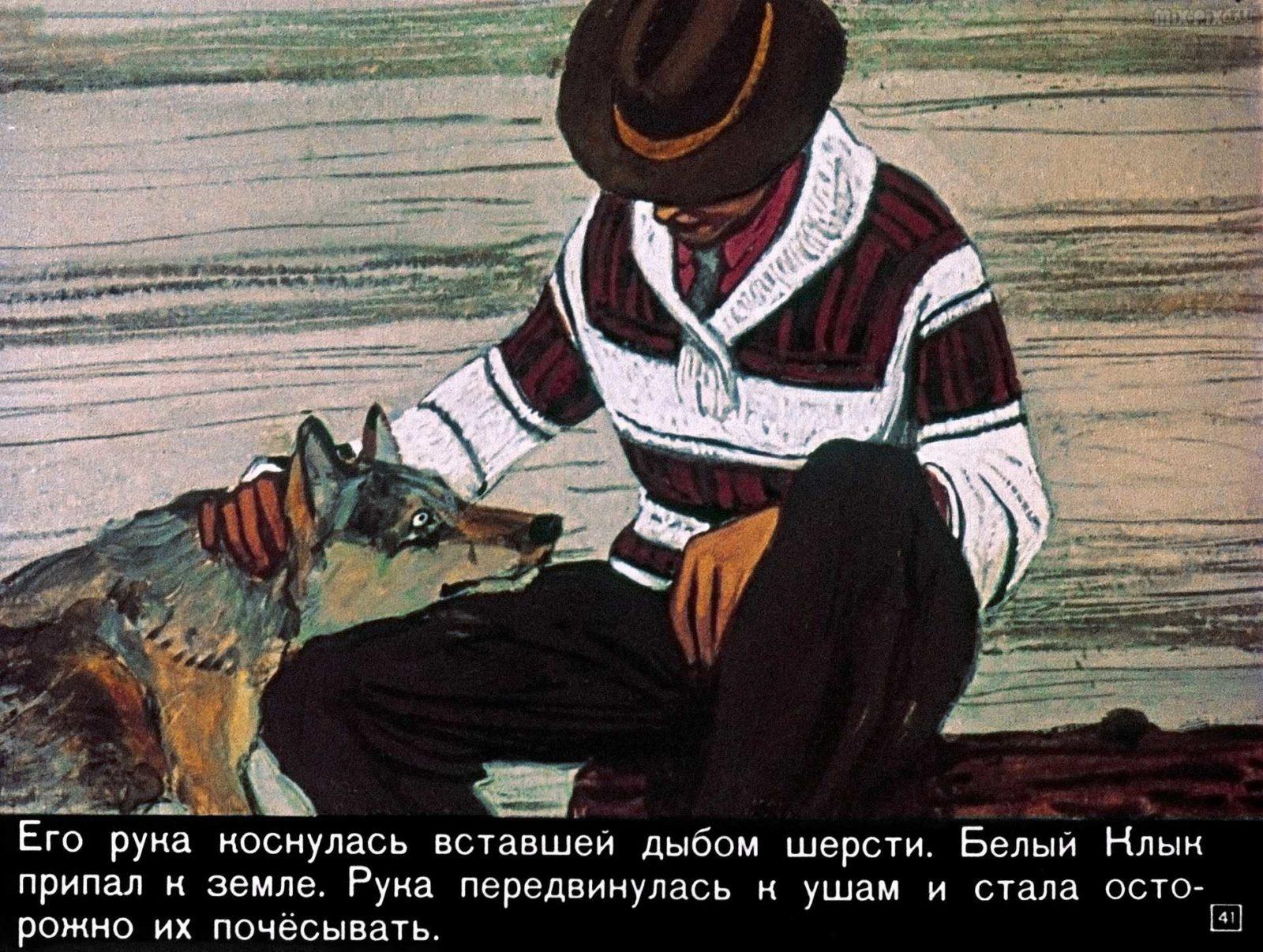 Белый клык (1969) 50
