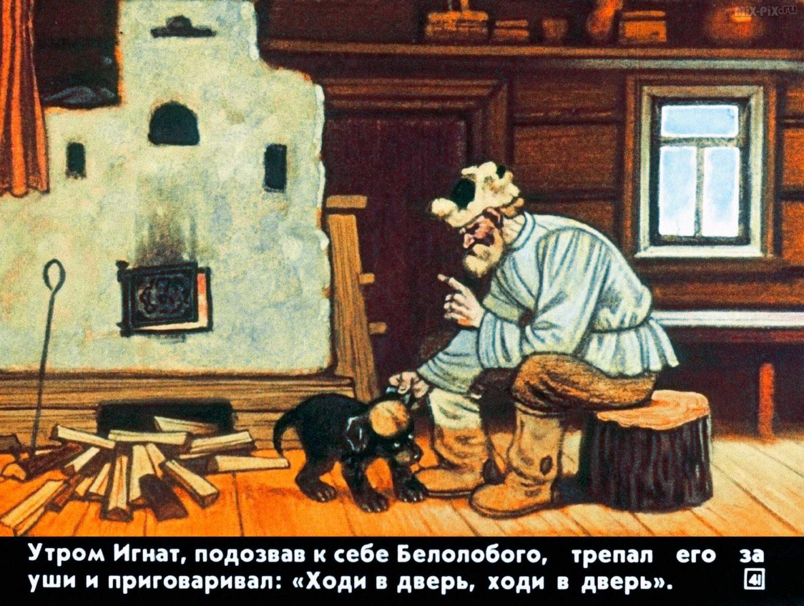 Белолобый (1988) 33