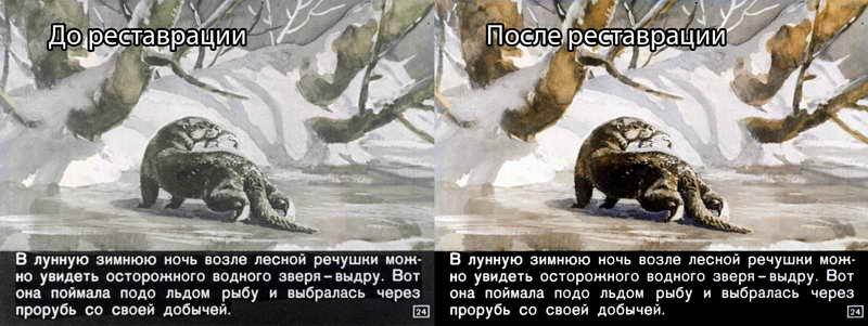 Диафильм -  Кто как зимует (1969)