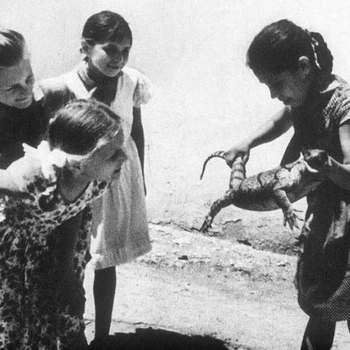 Жизнь в песках (1965)