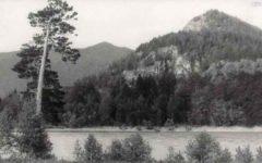 Западная Сибирь Часть 1 (1959)