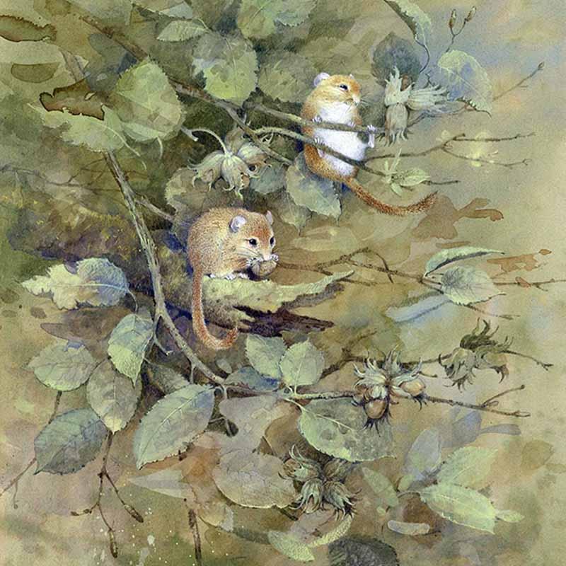 Английский художник Gordon Beningfield