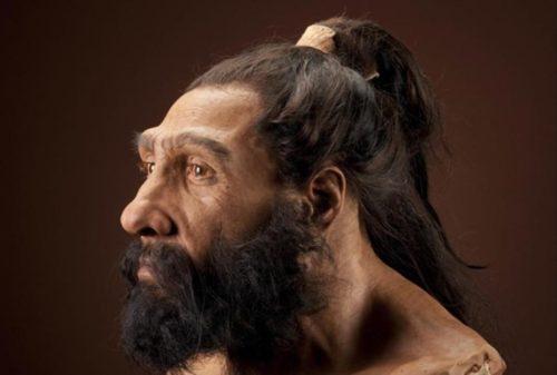 Неандертальцы как они жили и почему исчезли 8
