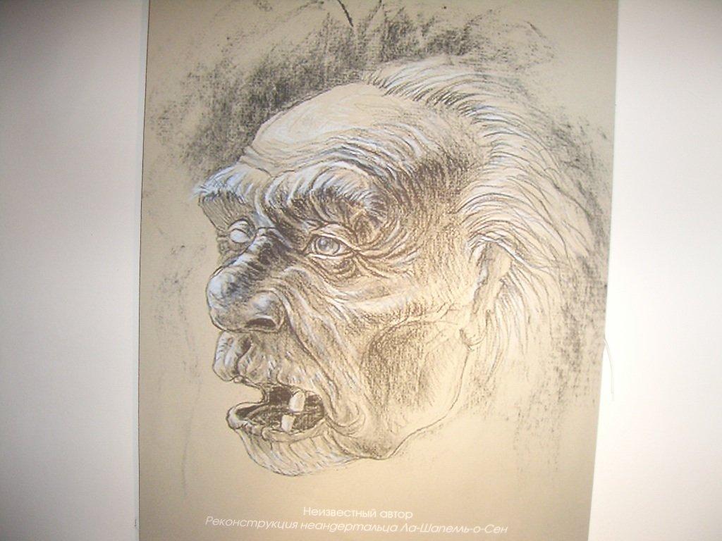 Неандертальцы как они жили и почему исчезли 2