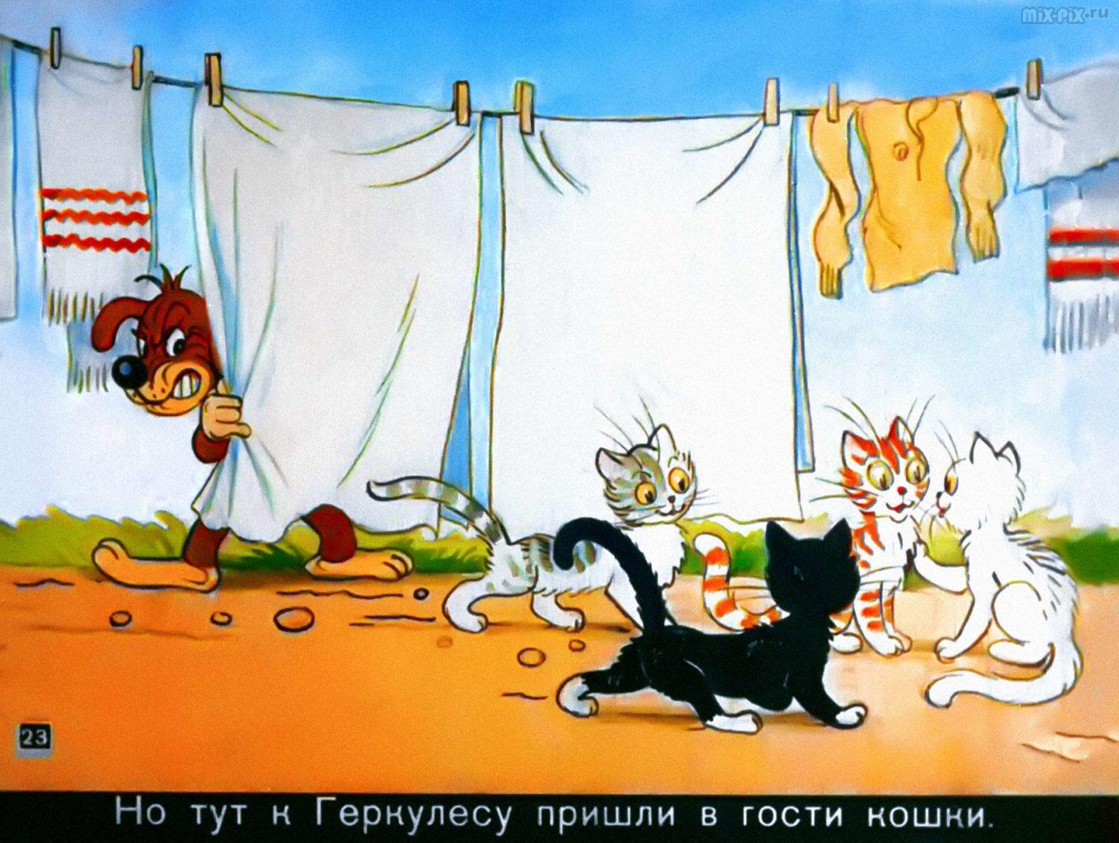 Приключения Пифа (1960) 41