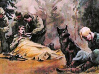 Собака разведчика (1956)