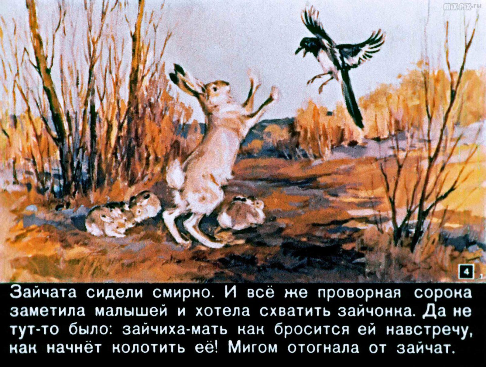 Зайкин год (1958) 32