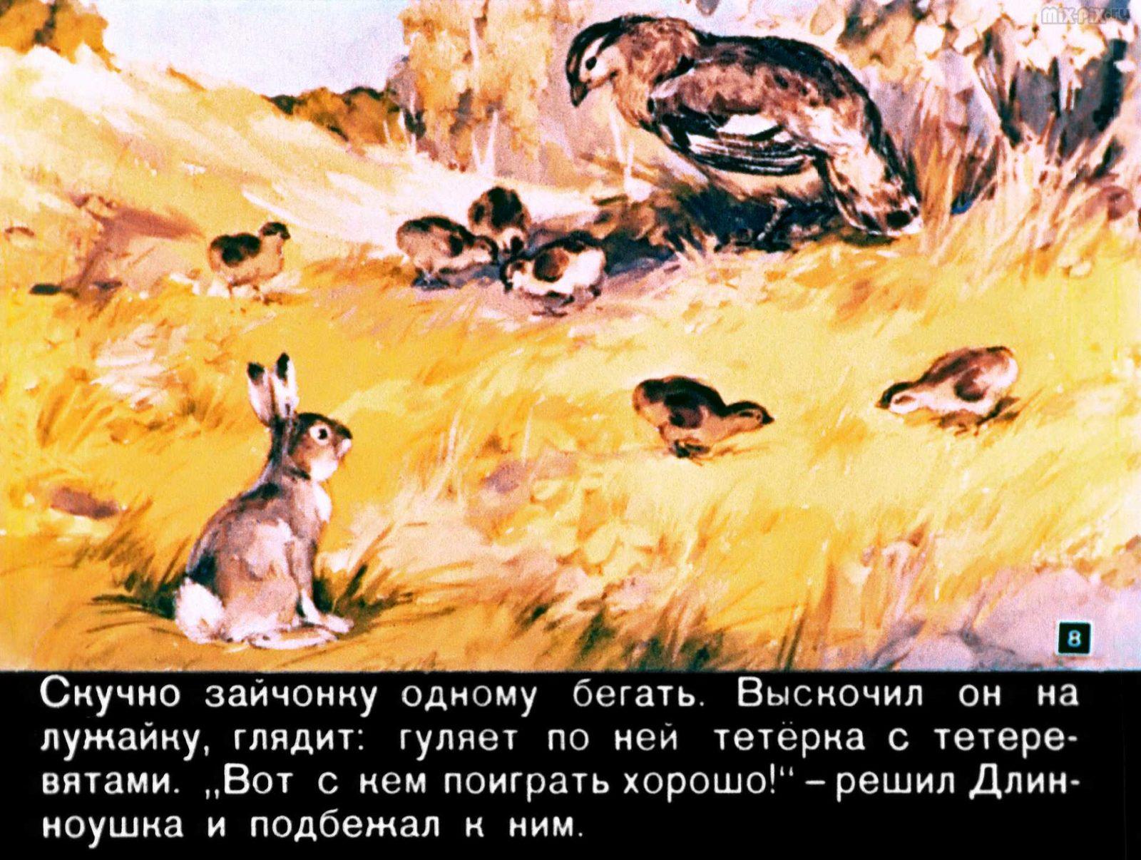 Зайкин год (1958) 34