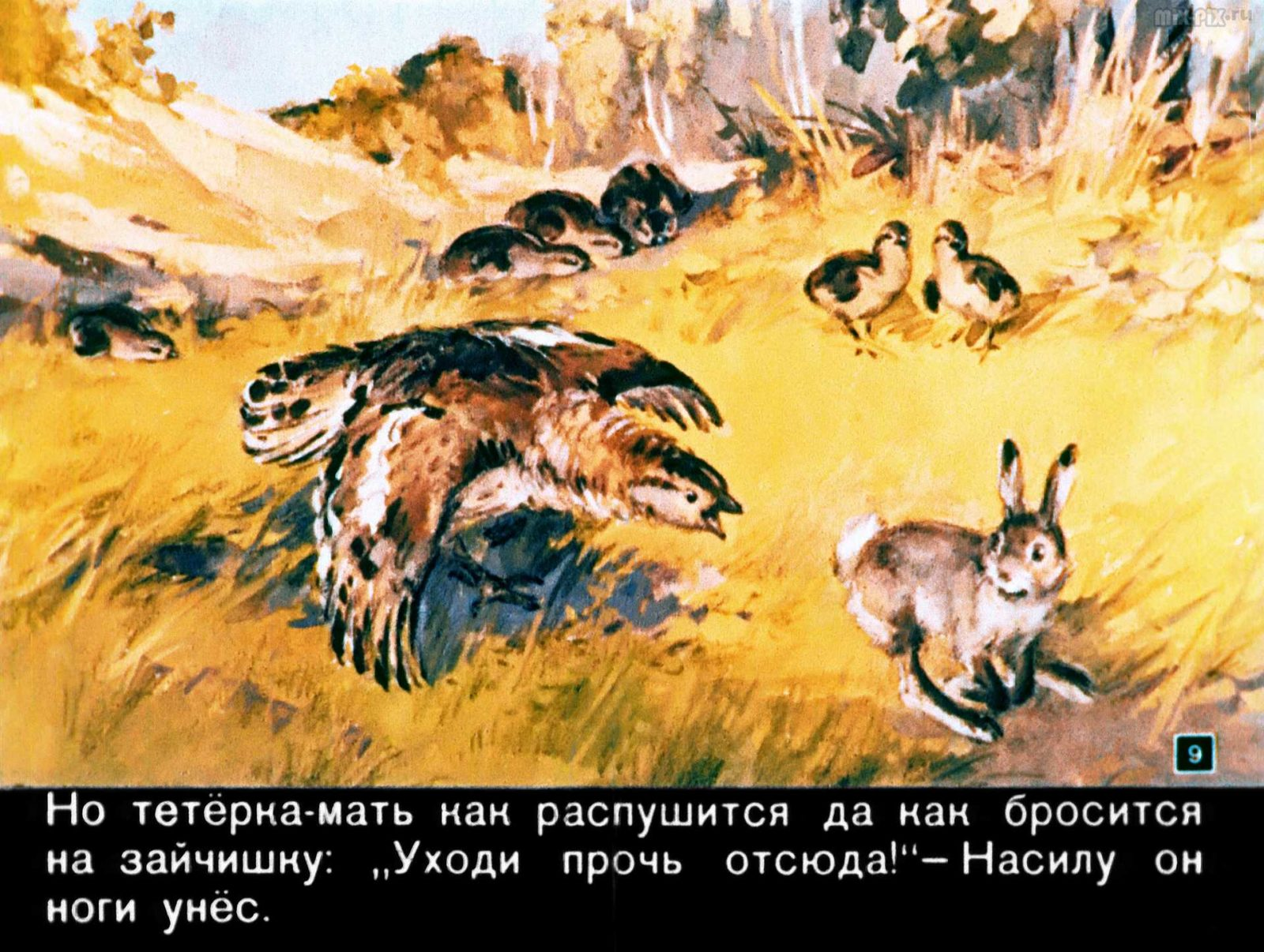 Зайкин год (1958)