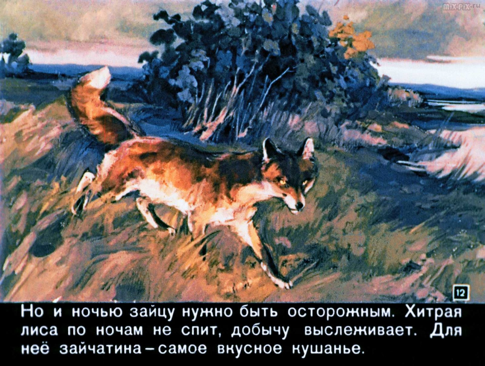 Зайкин год (1958) 36
