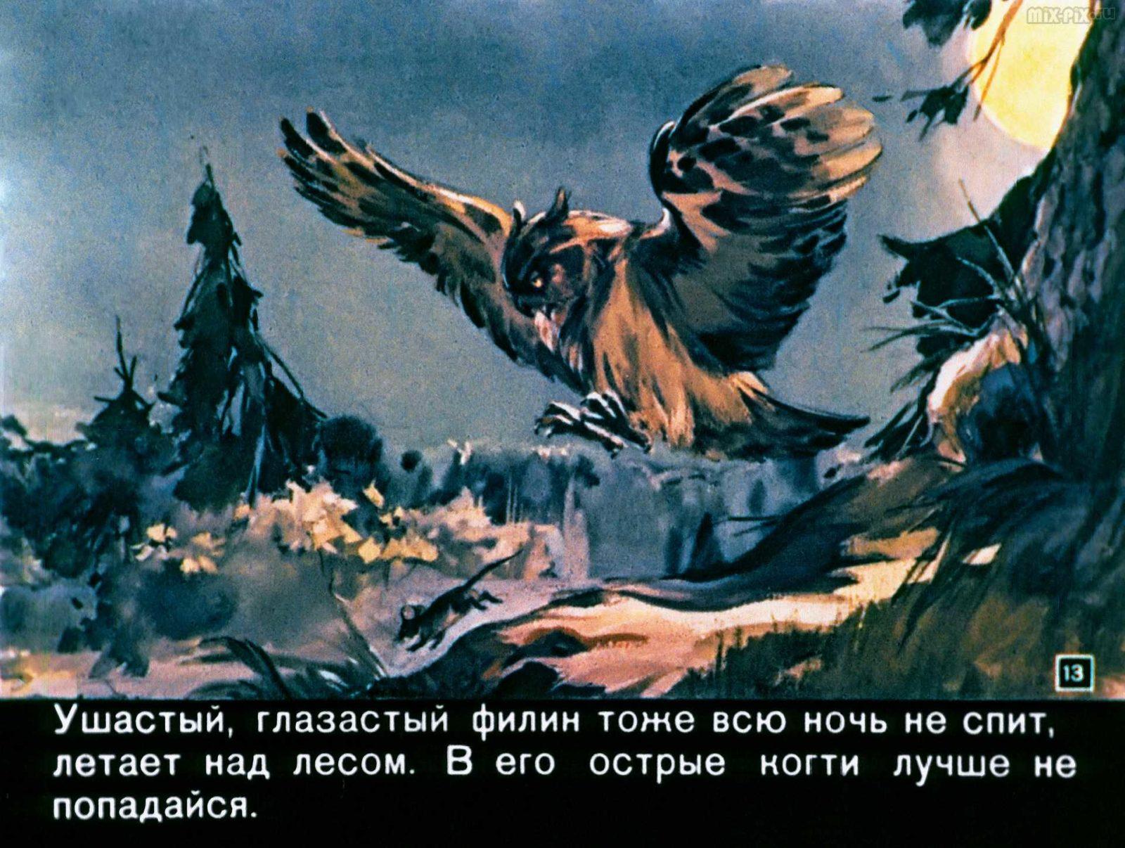 Зайкин год (1958) 37
