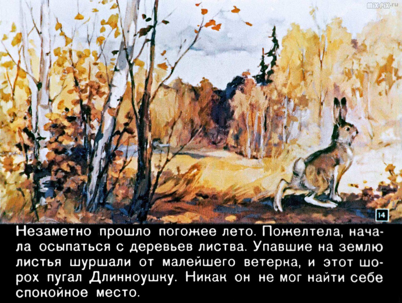 Зайкин год (1958) 38