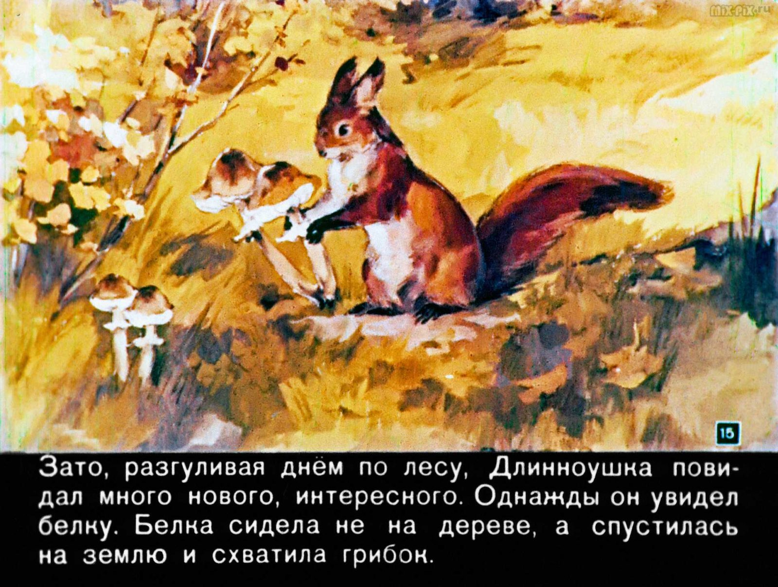 Зайкин год (1958) 39