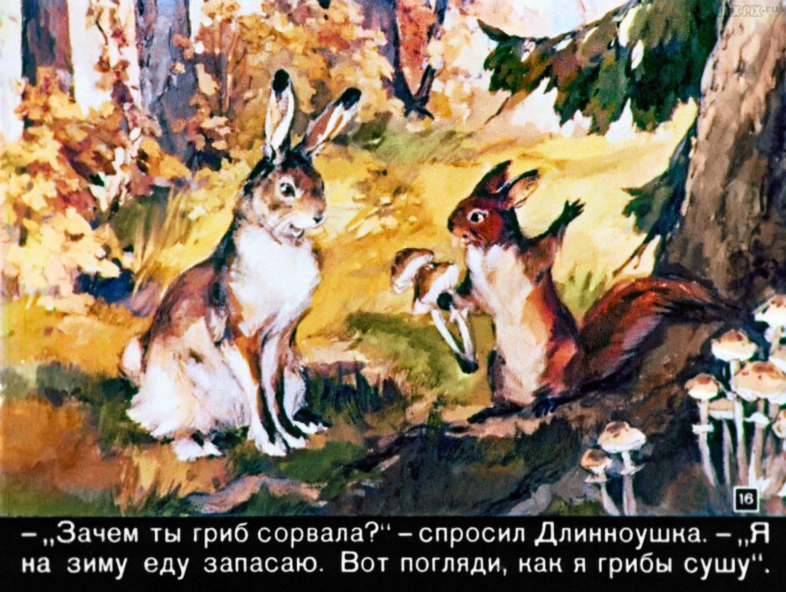 Зайкин год (1958) 40