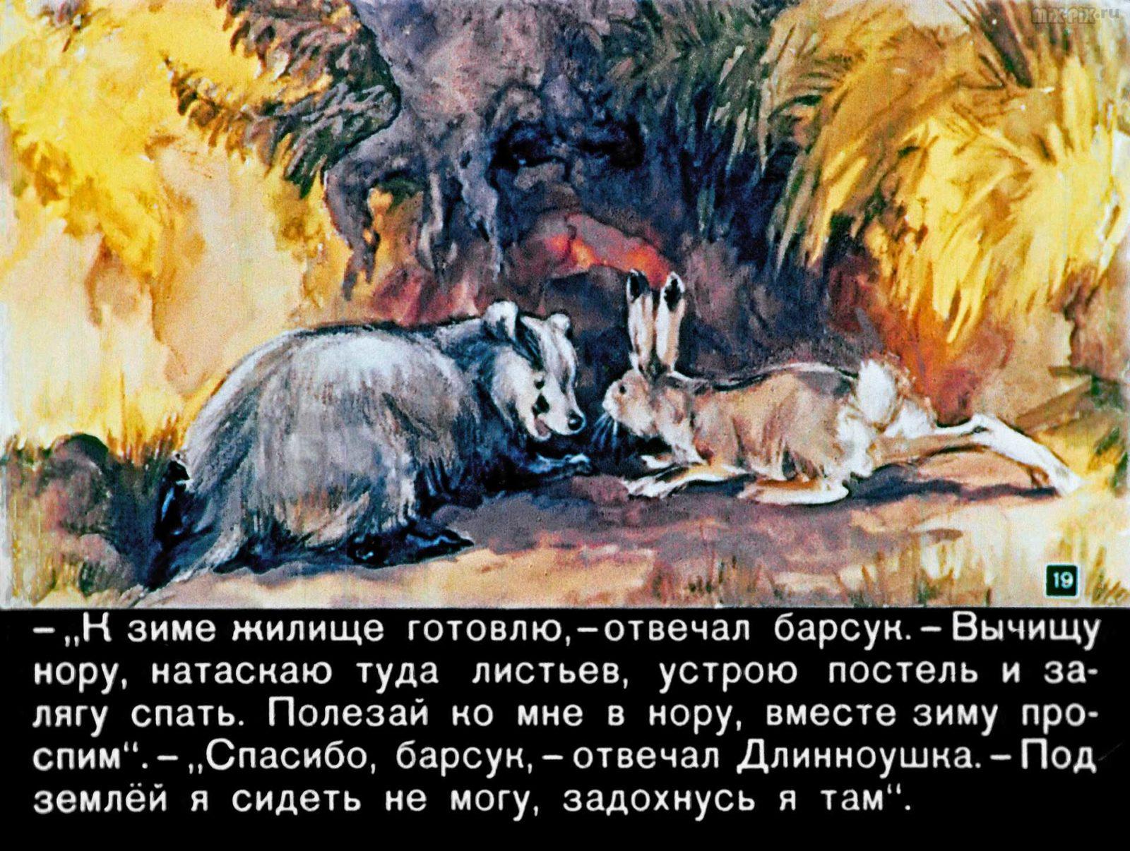 Диафильм - Зайкин год (1958)