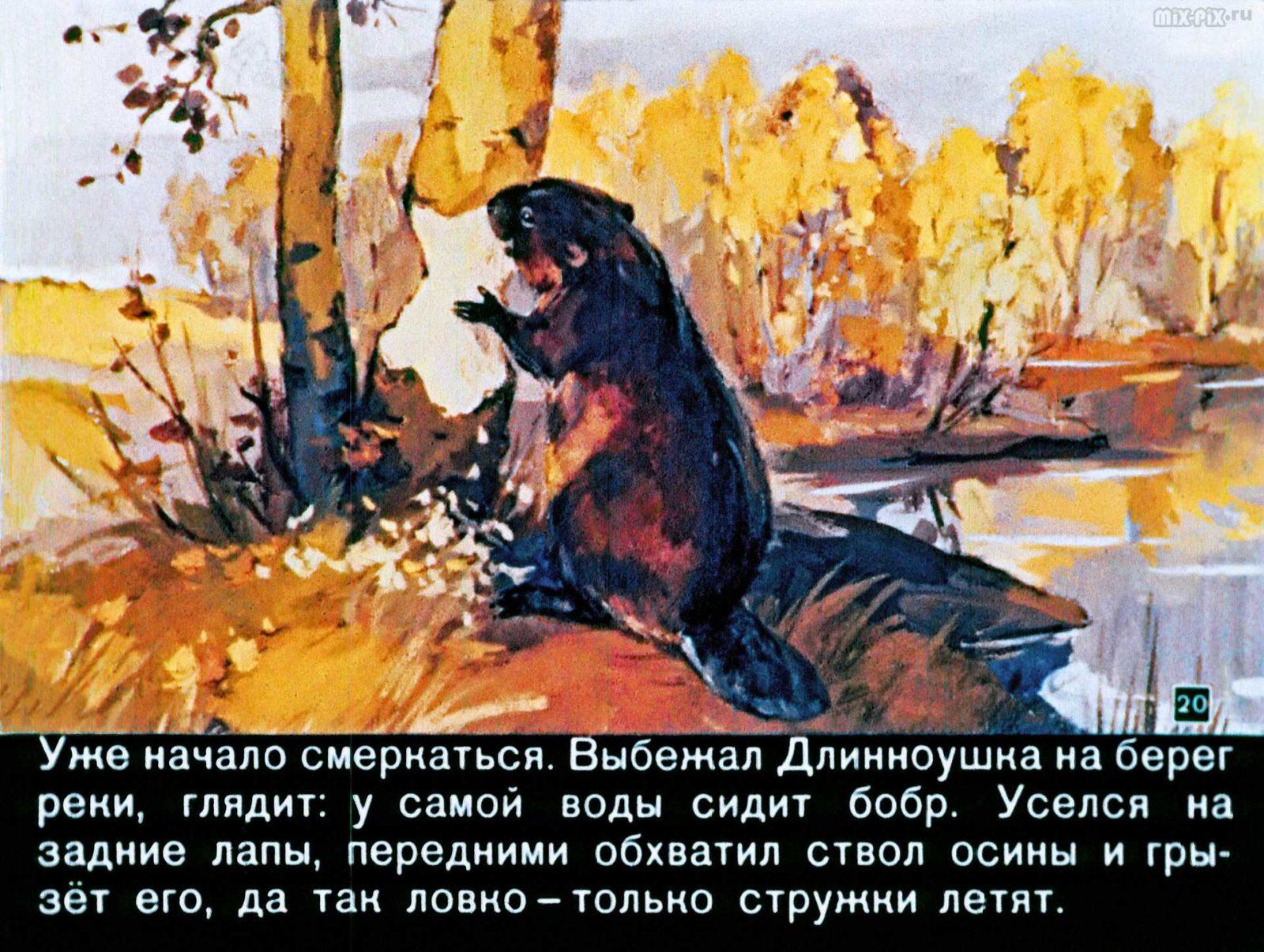 Зайкин год (1958) 43