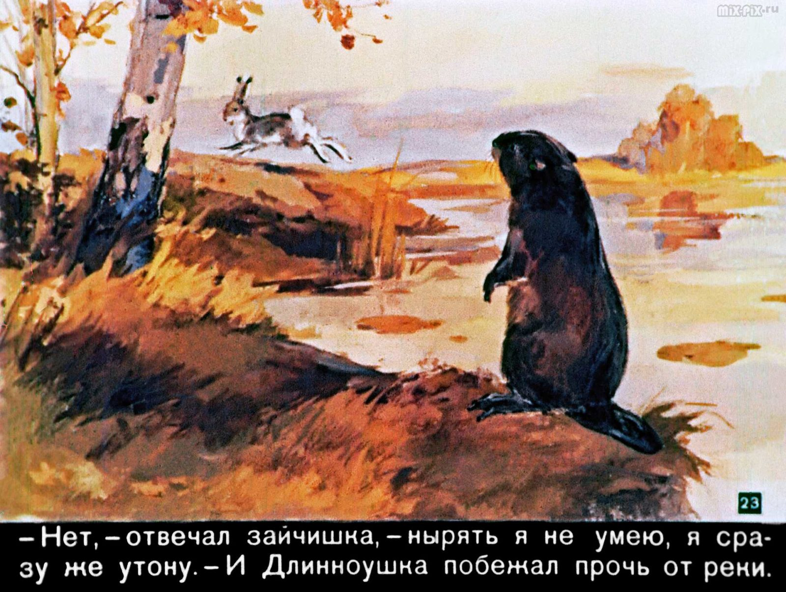Зайкин год (1958) 45