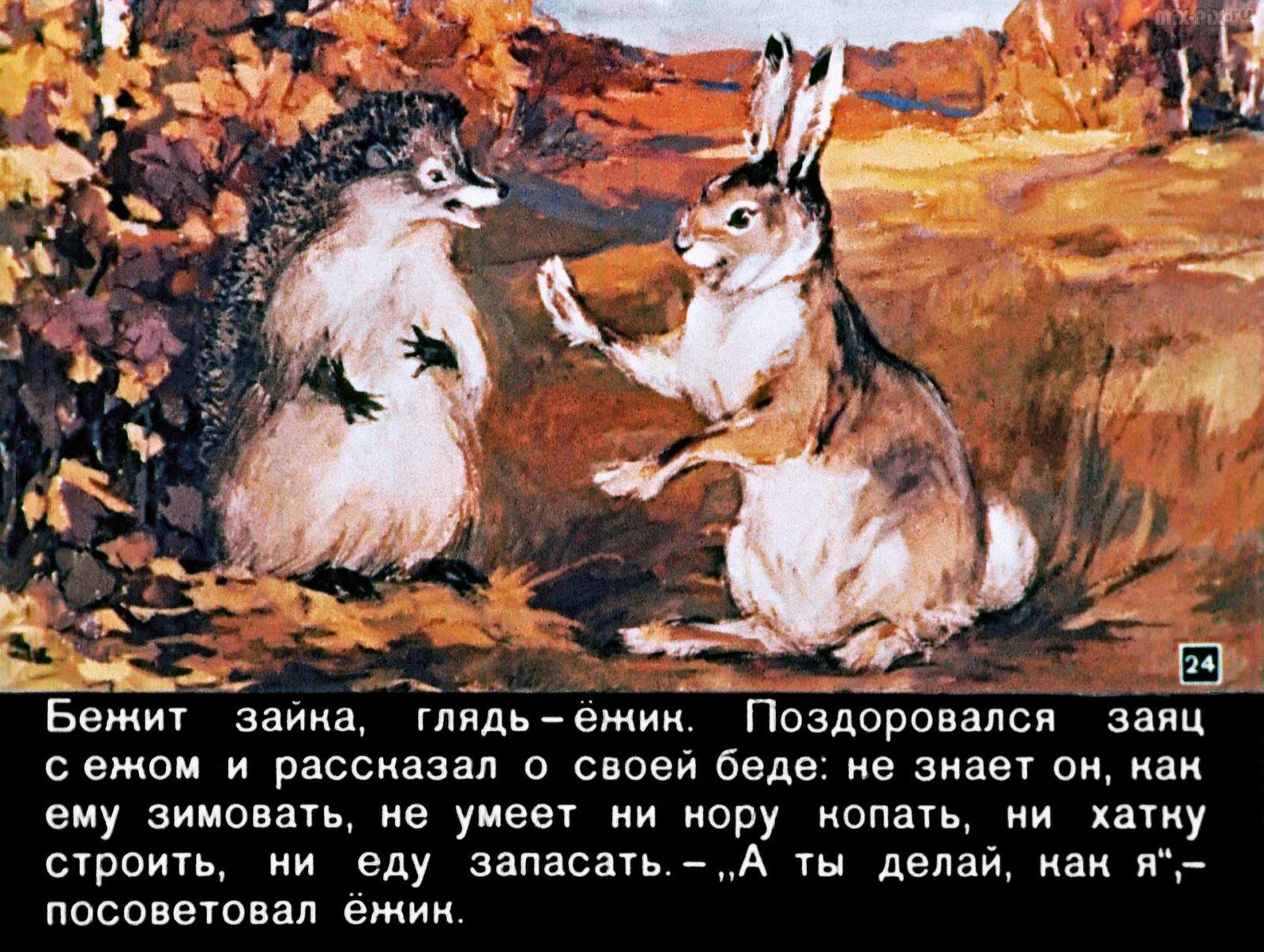 Зайкин год (1958) 46