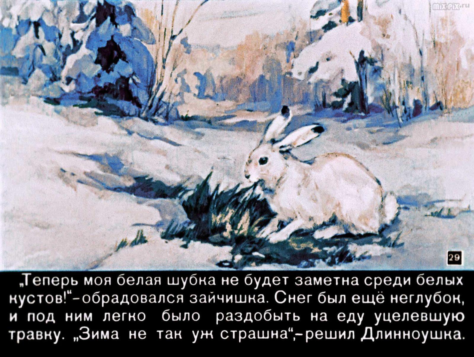 Зайкин год (1958) 49