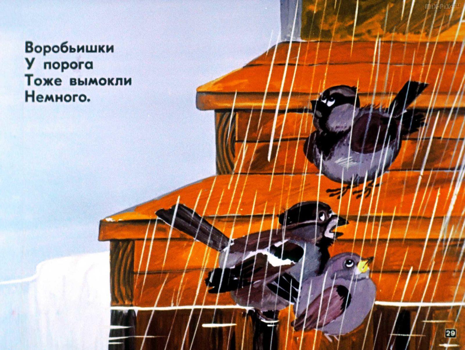Под солнцем пляшет девочка (1984) 41