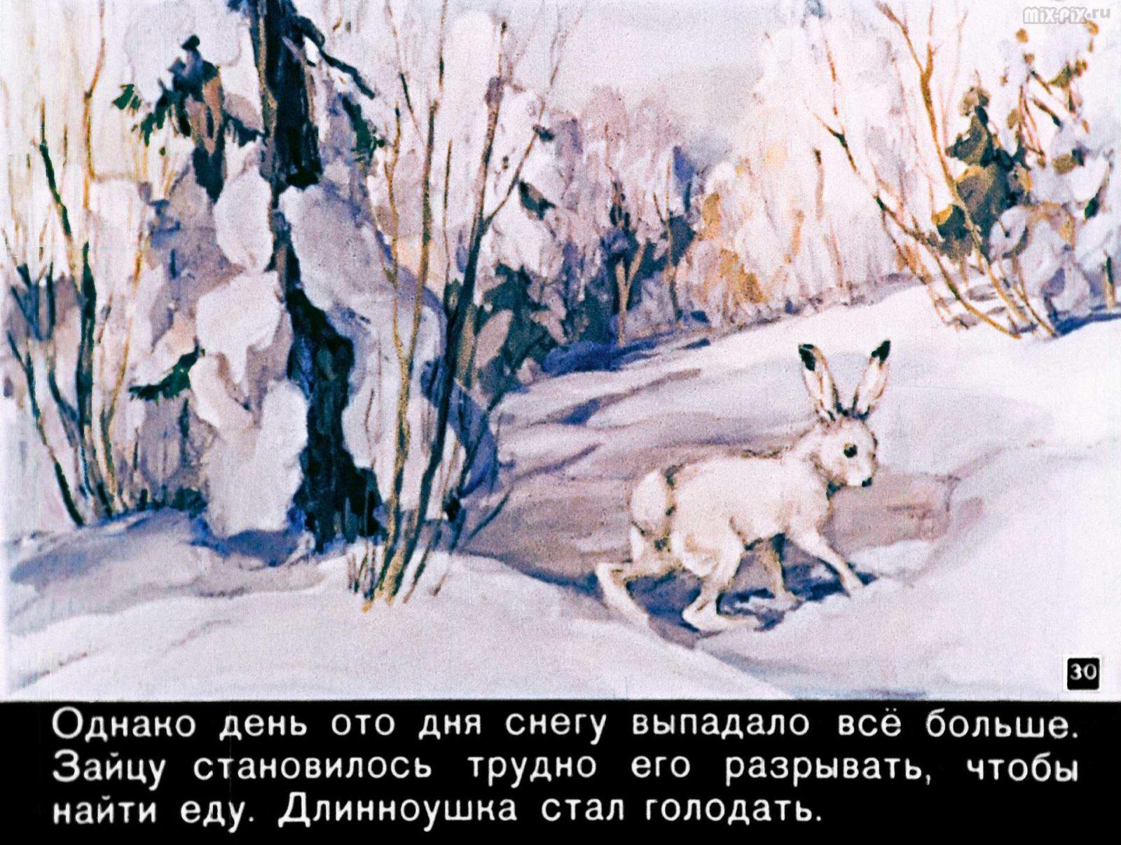 Зайкин год (1958) 50