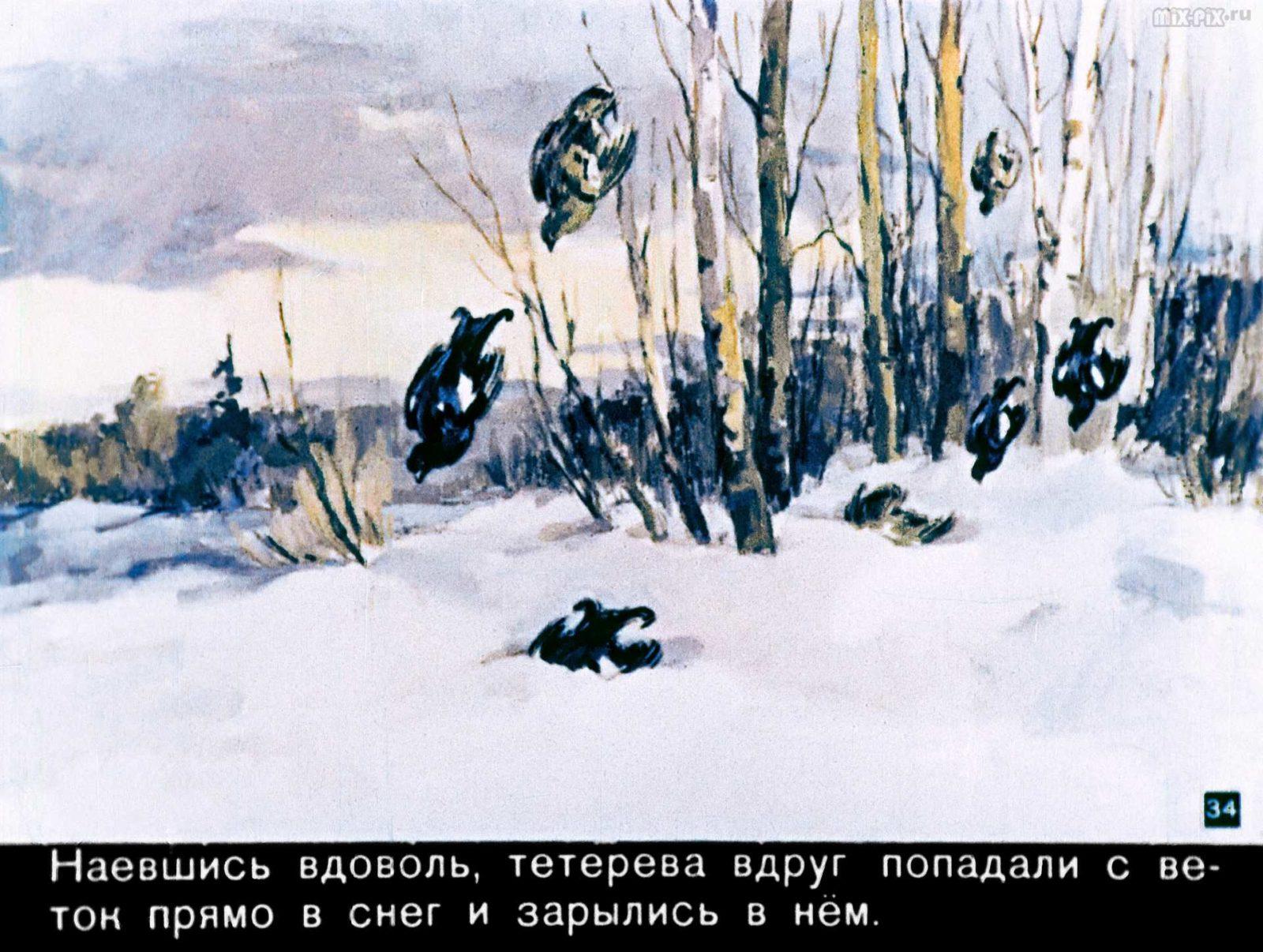 Зайкин год (1958) 52