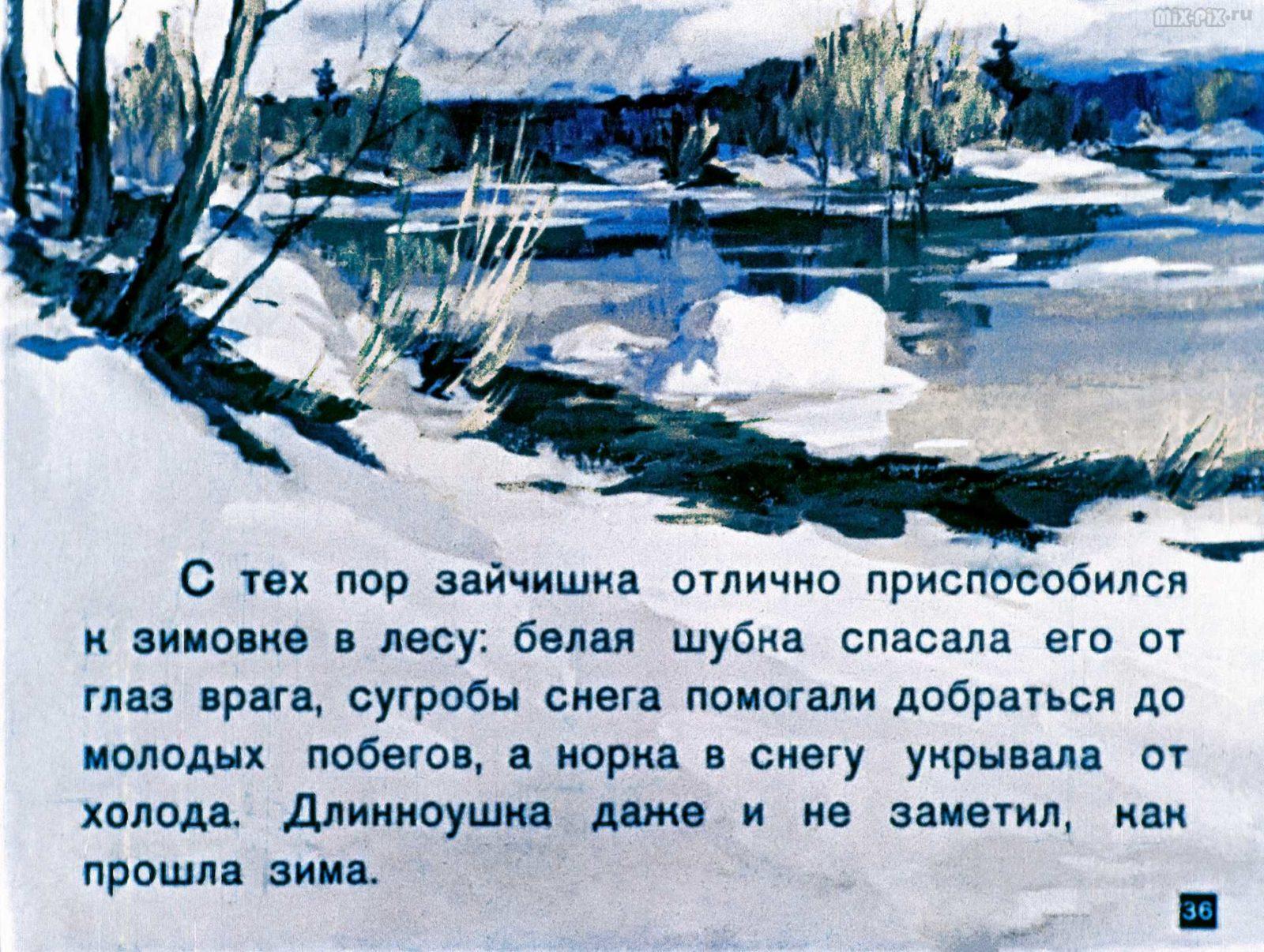 Зайкин год (1958) 53