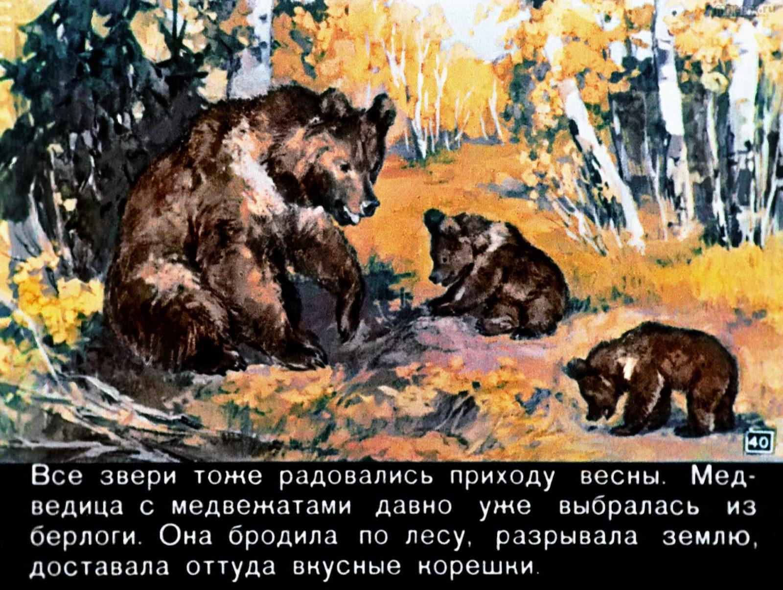 Зайкин год (1958) 56