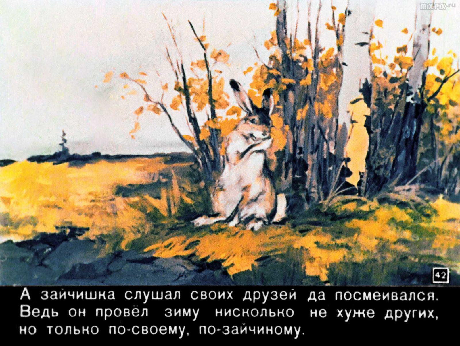 Зайкин год (1958) 57