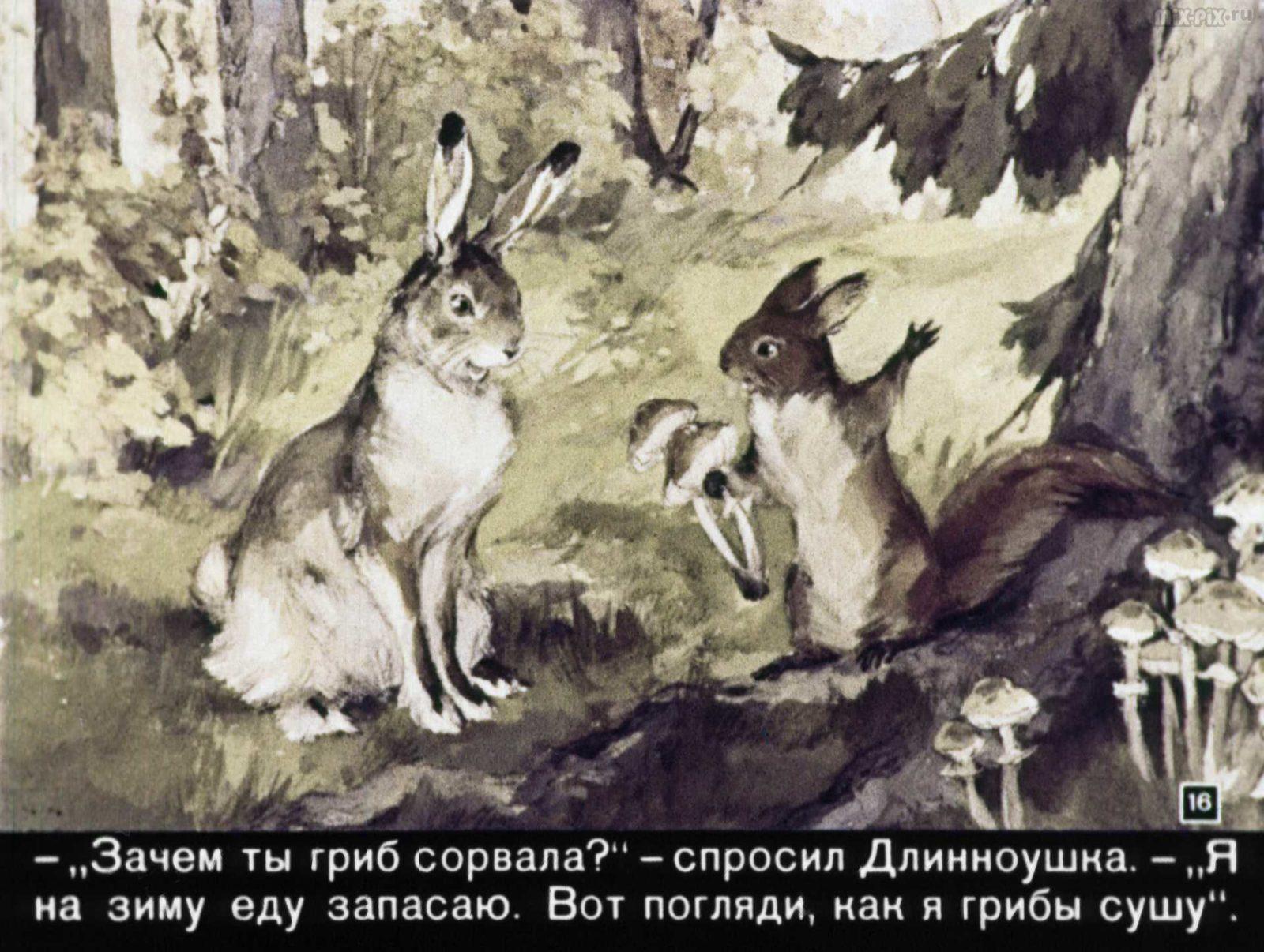 Зайкин год (1958) 59
